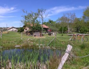 23-30 oct 2016 : résidence à l'éco-lieu Jeanot ( 40)